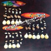 Bali Chime Surfboard Airbrush Shell Handicraft